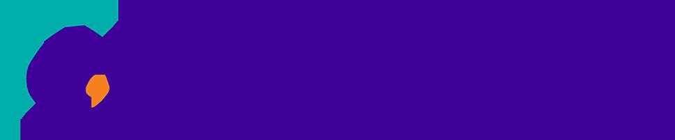 Danory Digital Consulting Logo